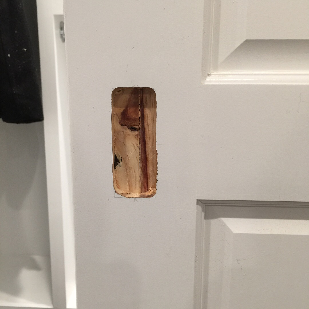 pocket door flush pull